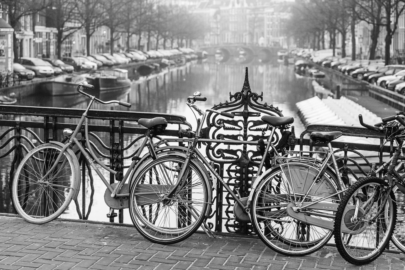 Amsterdam-transport-by-David-Townshend